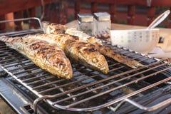 在格栅在家烘烤的鱼栖息处 免版税库存照片