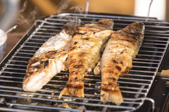 在格栅在家烘烤的鱼栖息处 库存图片