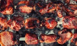 在格栅油煎的肉片 开胃片断烤 免版税库存图片
