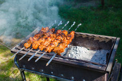 在格栅烟的Kebabs 免版税库存照片