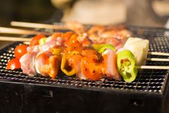 在格栅烤的BBQ,晒干用调味料 用途作为食物概念 免版税库存照片