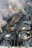 在格栅烤肉的蘑菇肋骨 库存图片