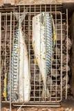 在格栅烹调的鱼鲭鱼尸体,顶视图,关闭 图库摄影