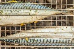 在格栅烹调的鱼鲭鱼尸体,顶视图,关闭 库存照片