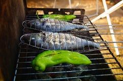 在格栅的两条鱼 烤肉parrty概念 库存图片
