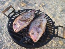 在格栅的两条鱼 库存照片