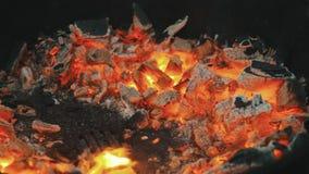 在格栅的发光的煤炭 股票视频