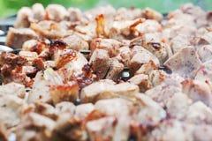 在格栅的开胃烤肉串特写镜头 免版税库存图片