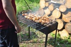在格栅的开胃烤肉串 野餐 库存照片