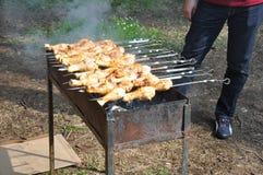在格栅的开胃烤肉串 野餐 免版税库存图片