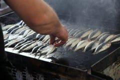 在格栅的沙丁鱼 库存照片