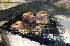 在格栅的烤肉串 库存图片