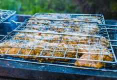 在格栅的烤肉 免版税图库摄影