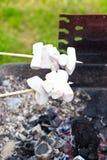 在格栅的烧烤marshmellows 免版税库存图片