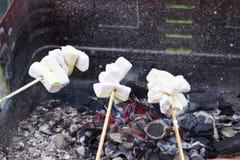 在格栅的烧烤marshmellows 库存图片