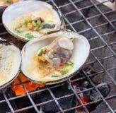 在格栅的牡蛎 图库摄影