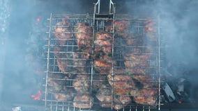 在格栅的肉 烹调在热的木炭的鸡肉冬天晚上 特写镜头顶视图,在烟中的肉 股票录像