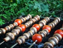 在格栅的蘑菇 油煎的蘑菇,油煎的蘑菇用蕃茄 库存图片