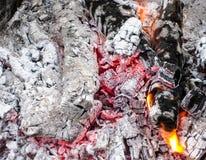 在格栅的闷燃的煤炭 在烤肉串以后的灼烧的火 免版税图库摄影