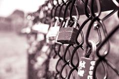 在格栅篱芭的锁 库存图片