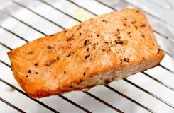 在格栅,软的焦点的烤三文鱼内圆角 免版税库存照片