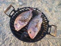 在格栅-室外烹调的两条鱼在海滩 免版税库存照片