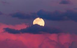在桃红色云彩的月亮在日落 免版税库存照片