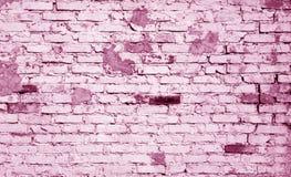 在桃红色口气的老被风化的砖墙样式 库存图片