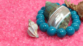 在桃红色和绿松石小珠的三不同海壳 免版税库存图片