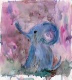 在桃红色天空的婴孩大象 库存图片