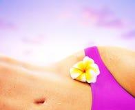 在桃红色性感的日落妇女的海滩 免版税图库摄影