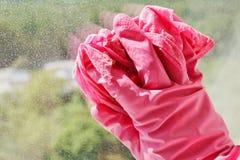 在桃红色手套洗涤的玻璃窗的手 图库摄影