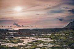 在桃红色日落期间的低潮在岩石海滩 免版税库存照片