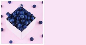 在桃红色时髦背景的新鲜的摘的蓝莓 库存照片