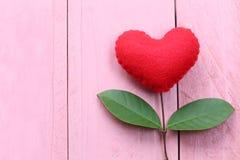 在桃红色木桌安置的红色心脏连接用分支o 库存图片