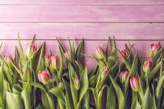 在桃红色木背景,复活节快乐,春天的桃红色郁金香 免版税库存图片