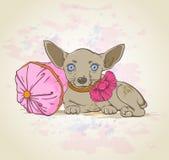 在桃红色枕头的狗 免版税库存照片