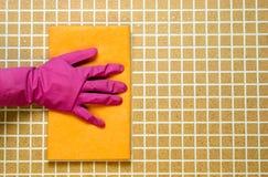 在桃红色橡胶手套的一只手 库存图片