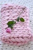 在桃红色毯子的桃红色玫瑰 免版税库存照片