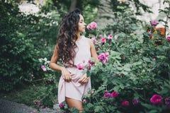 在桃红色玫瑰中的美丽的女孩在庭院里 免版税库存图片