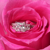 在桃红色玫瑰的定婚戒指。特写镜头 库存图片