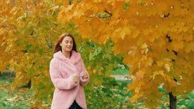 在桃红色的秋天公园走在槭树黄色树附近的少妇,摆在 影视素材