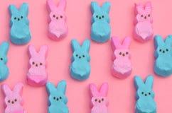 在桃红色的蓝色和桃红色蛋白软糖兔宝宝 库存照片