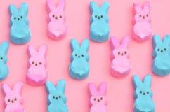 在桃红色的蓝色和桃红色蛋白软糖兔宝宝 免版税图库摄影