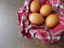 在桃红色纹理的美丽的鸡蛋 免版税图库摄影