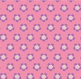 在桃红色背景无缝的传染媒介样式的狂放的玫瑰色花圆点 图库摄影