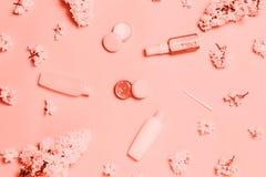 在桃红色背景的居住的珊瑚装饰化妆用品 库存照片