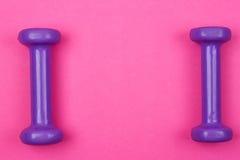 在桃红色背景的紫色哑铃 免版税图库摄影