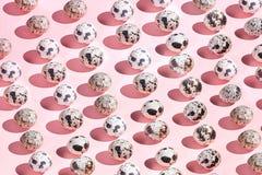在桃红色背景隔绝的小的鹌鹑蛋的汇集 免版税库存照片