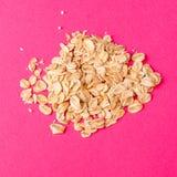 在桃红色色的背景的燕麦 库存照片